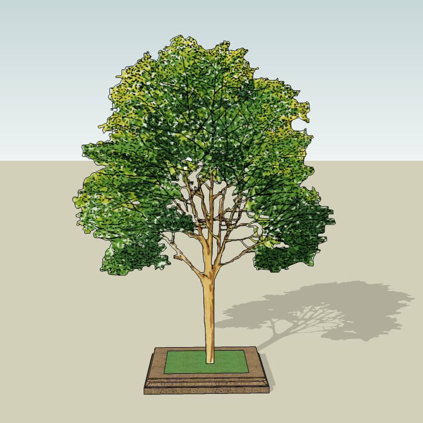 方形树池   花岗岩树池  麻石  创意坐凳   长凳  欧式树池   广场 公园 公共空间  种植池休息 闲坐 草图大师 模型 景观园林设计  室外模型 SKP