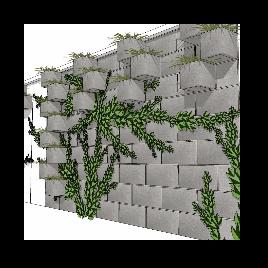 爬墙 植物 景观 墙面 美陈