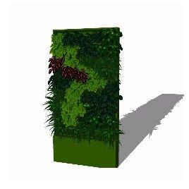 绿化  景观墙 植物墙