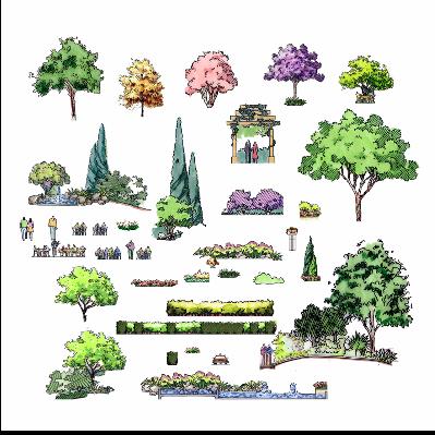 手绘植物和景观配景