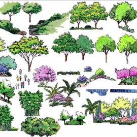 PS景观手绘立面素材