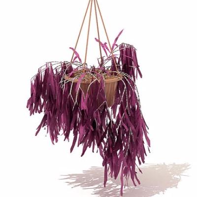 吊盆植物模型