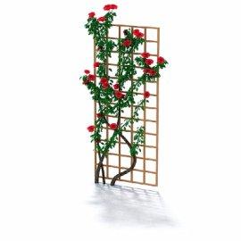 植物花架模型