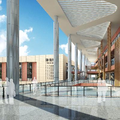 现代精致小学校园投标规划方案设计