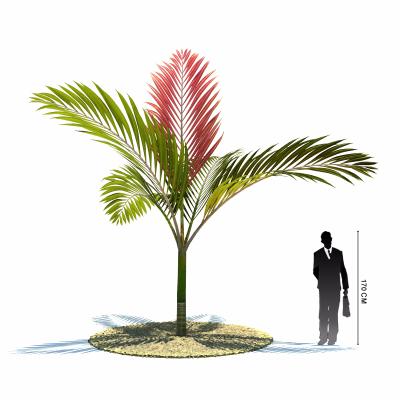 精美植物3d模型