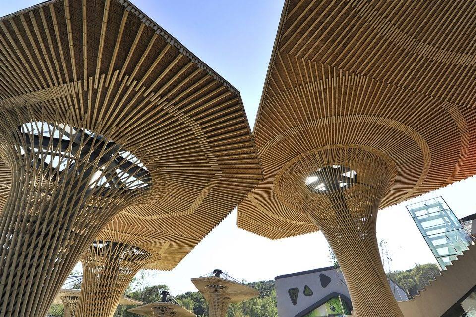 沈阳森林动物园熊猫馆建筑与景观设计