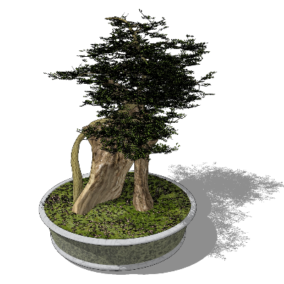 院子树盆栽SU模型